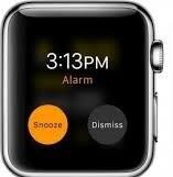 Set Alarm in Apple Watch