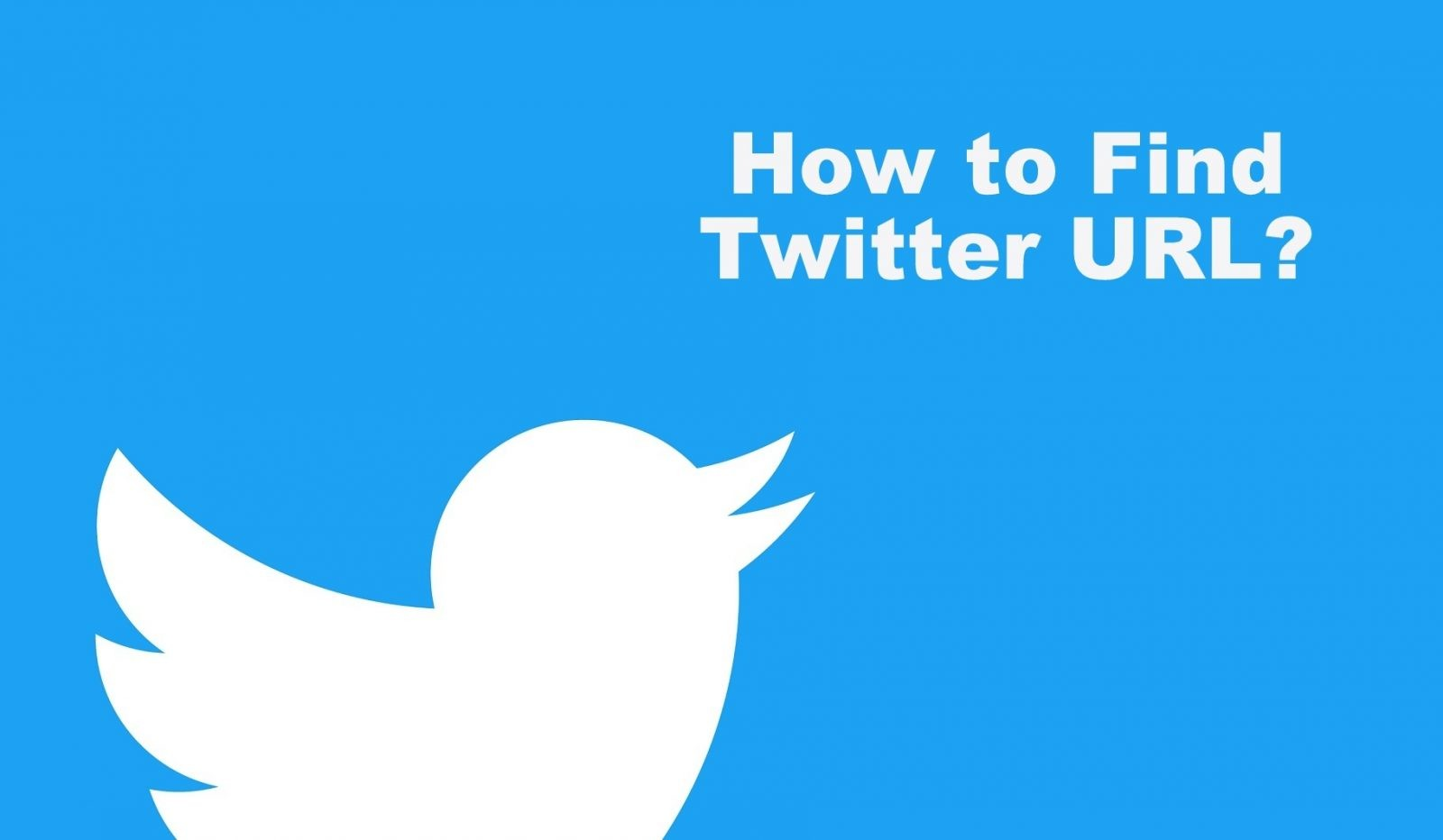 How to Find Twitter URL and Share it with others