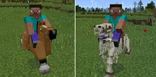 Tame Horses