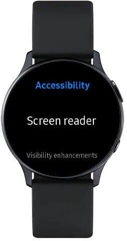 Screen reader option