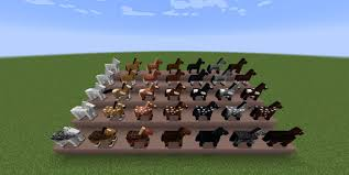 Various Horses in Minecraft