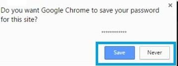 Google Chrome Save Password