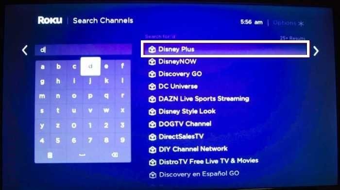Search Disney Plus