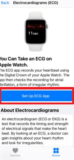 Set up ECG on Apple Watch