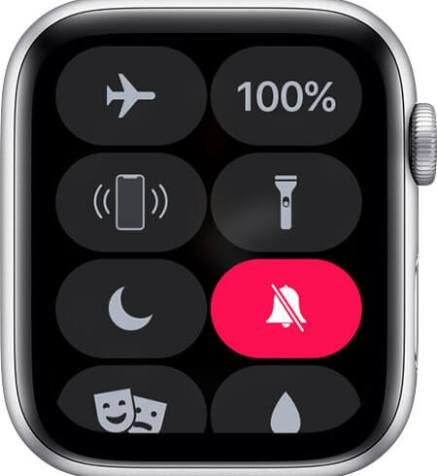 How to mute apple watch notification.