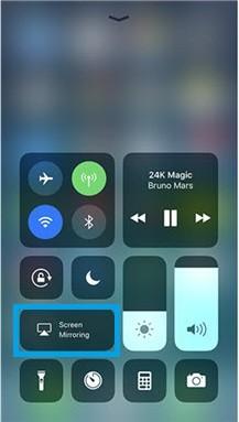 Screen Mirroring option