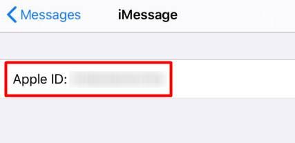 Click on Apple ID to change Apple ID on Apple watch